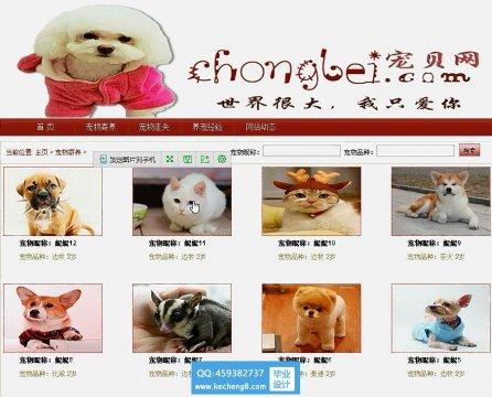 J2EE宠物领养交流网站struts2框架